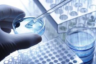 LifeNet Health offers a complete portfolio of Human Hepatocyte Media that include thawing, culture, and plating medium as well as necessary supplements